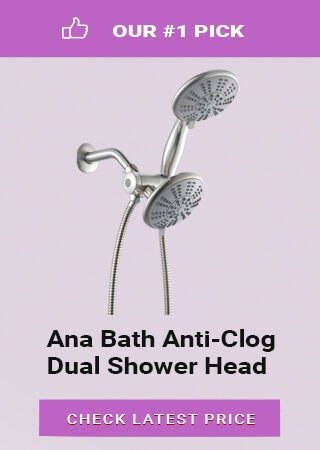 affordable dual shower head, best rated dual shower head, best dual head shower