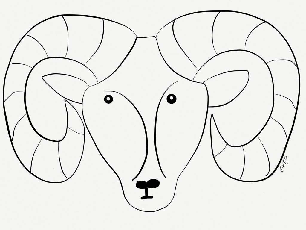 Big Horn Sheep Worksheet