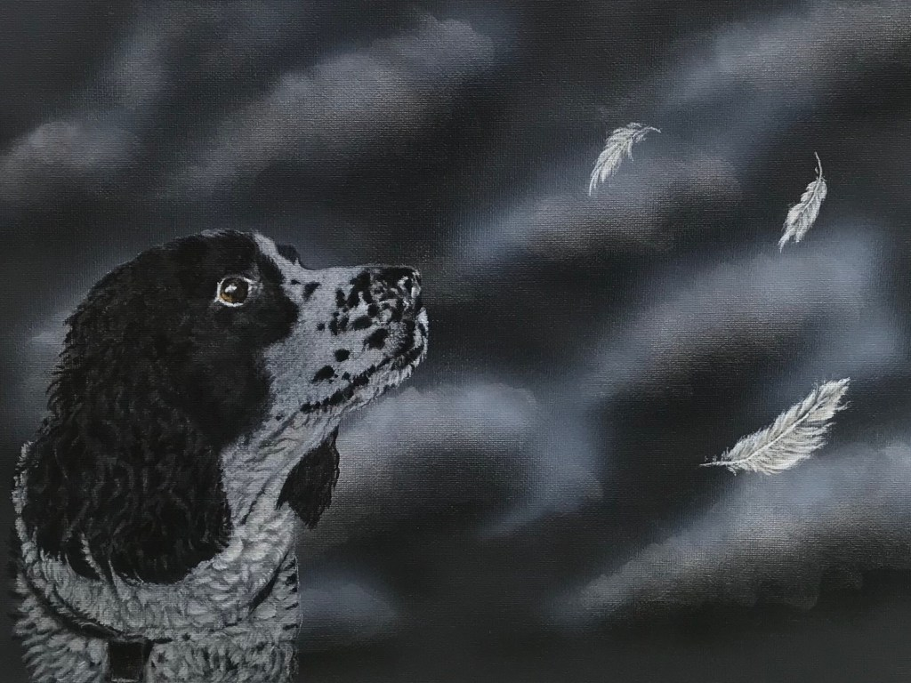 Springer Spaniel in Acrylic