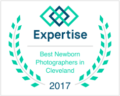 Best Newborn Photographers in Cleveland, 2017, Expertise