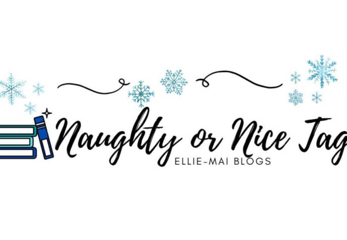 Naughty or Nice Tag