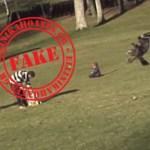 Καταρρίπτεται – Αετός άρπαξε παιδάκι σε πάρκο του Μόντρεαλ.