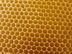 bee-hive-yellow