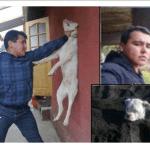 Like Farming – Άγρια κακοποίηση σκύλου σοκάρουν οι φωτογραφίες ΑΥΤΟΣ Ο ΑΝΘΡΩΠΟΣ ΠΡΕΠΕΙ ΝΑ ΤΙΜΩΡΗΘΕΙ