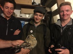 Will Langdon, George Dunbar and being left stunned by this beautiful 1st winter LONG-EARED OWL caught and ringed on Bardsye Island during the 2016 NBG Trip