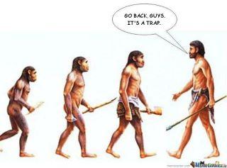 progress_evolution