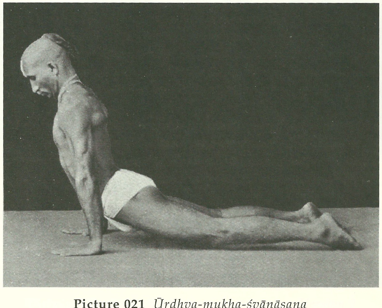 yoga styles_krishnamacharya