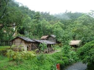 village wanderer part 8