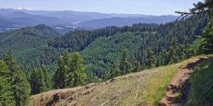 alpine_trail_mountains