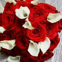 calla lily, rose, red, white