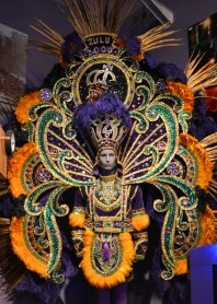 Check out this amazing costume from the Mardi Gras museum