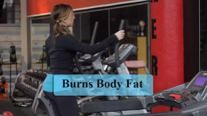 Burns Body Fat