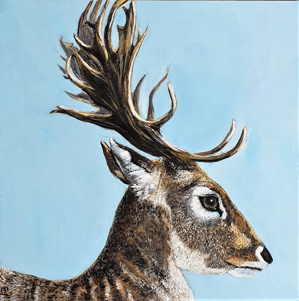 Fallow Deer oil painting