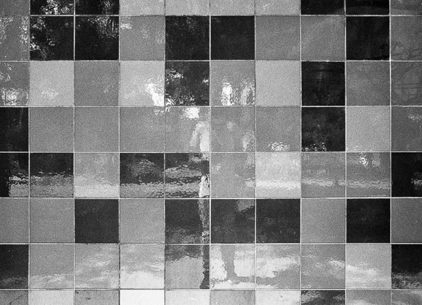 black and white image of a tiled building