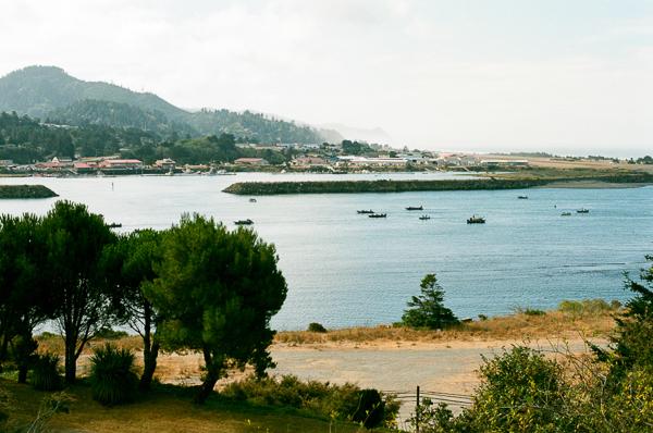 a scenic photo of a harbor in oregon