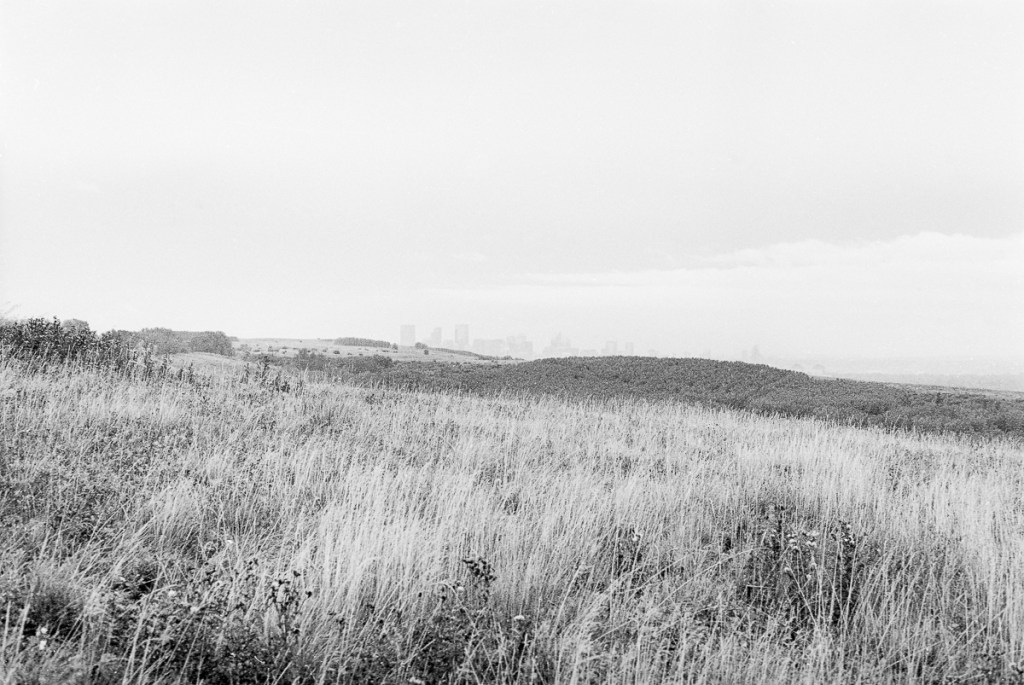 a black and white landscape of Nose Hill Park in Calgary Alberta Canada