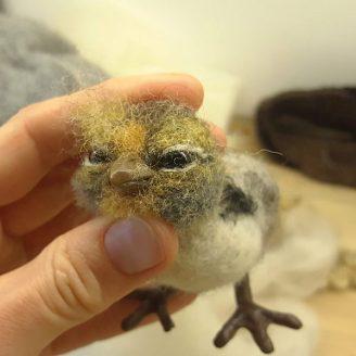 Lintu huovutusohjeet. Ellunhuopa online- koulutus