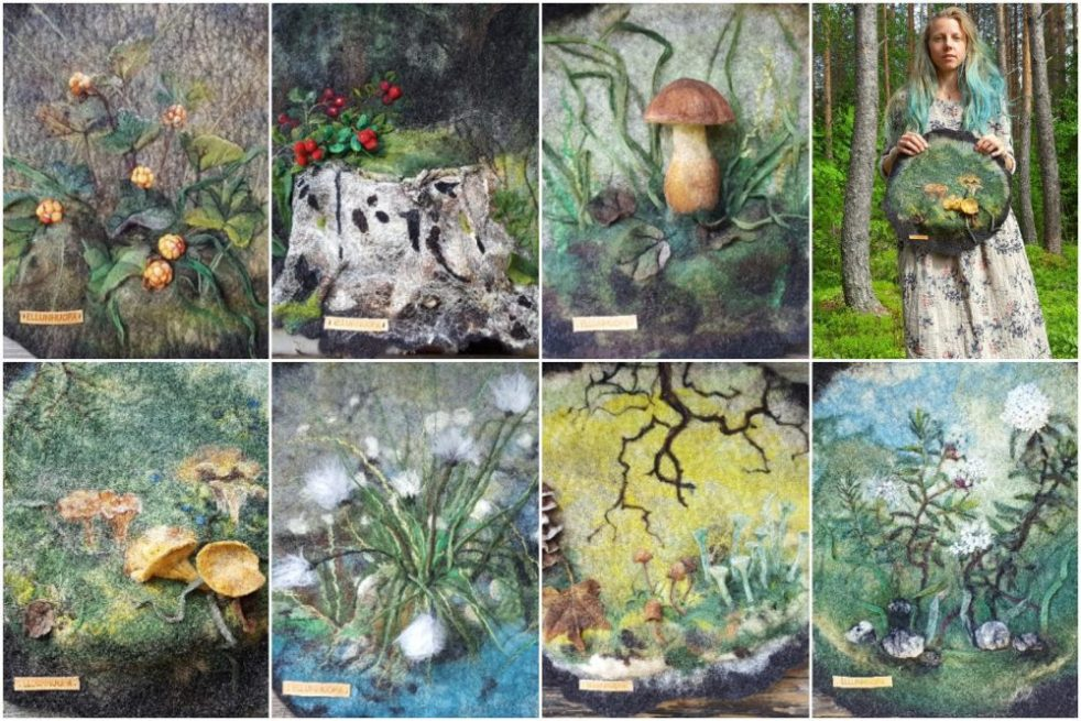 suomen metsä, erämaan kasvit, tatti, suopursu, tupasvilla, puolukka, jäkälä, kantarelli, lakka