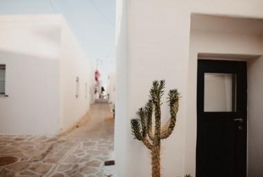 ellwed Ellwed_Anestis_Papakonstantinou_05 Serene and Idyllic Mediterranean Wedding in Antiparos