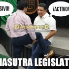 Kamasutra Legislativo