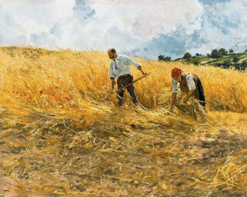الحصاد