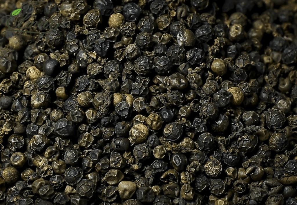 Price of black pepper new crop from Vietnam, black pepper 500gl best price.