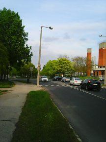 Photo3345