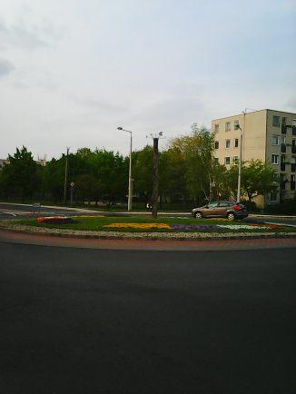 Photo3351