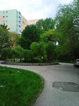 Photo3413