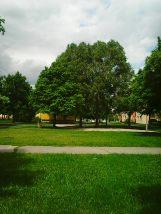 Photo3443