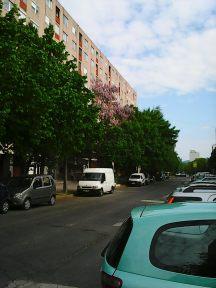 Photo3495