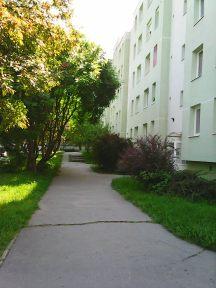 Photo3533