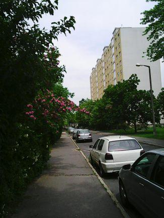 Photo4069