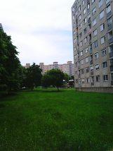 Photo4216