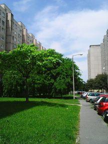 Photo4293