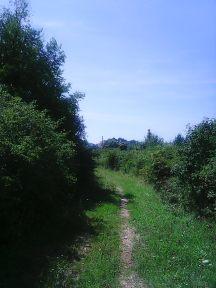 Photo4868