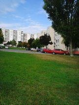 Photo4929