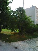 photo5031