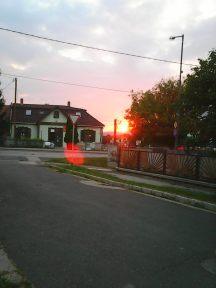 photo5126