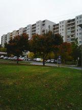 photo5556