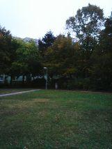 photo5577