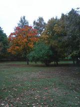 photo5635