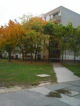 photo5640