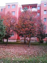 photo5905