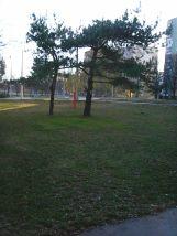 photo6038