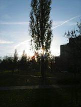 photo6064
