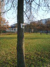 photo6078