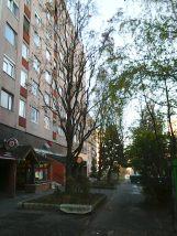 photo6166