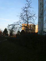 photo6214