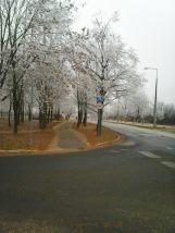 photo6677
